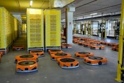 Roboty z Kołbaskowa  /fot.: mab /